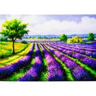 Алмазная мозаика АЖ-1338 «Лавандовое поле»