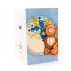Набор для изготов. объемной открытки Прямые ручки TZ-PRO007 «Мишка с букетом»