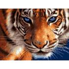 Набор для раскрашивания Цветной  GX5808 «Взгляд тигра»