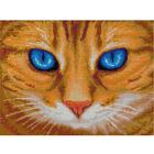 Алмазная мозаика АЖ-1716  «Синеглазый кот»