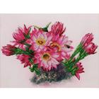 Набор для вышивания М.П.Студия В-240 «Цветущий кактус» 8*8 см
