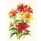 Набор для вышивания Риолис №1782 «Солнечные лилии» 25*33 см