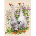 Набор для вышивания Риолис №1807 «Гуси» 30*40 см