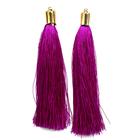 Кисти цветные декоративные Астра уп.2 шт.  6797 фиолетовый