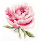 Набор для вышивания Алиса 2-47 «Нежный пион» 22*24 см