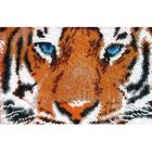 Рисунок для вышивания бисером Butterflay 945 «Глаза тигра»