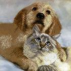 Рисунок для вышивания бисером HP СБ-1034 «Друзья» 18*22 см
