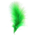Перья Астра (20 г) НТ108А22 9-13 см  индейка (90 зеленый)  7718483