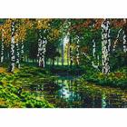 Рисунок для вышивания бисером Вышивай-Ка ВК-04-011 «Березки» 20*26 см