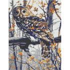 Рисунок для вышивания бисером Каролинка КБЖ-4033 «Филин» 18*24,5 см