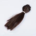 Волосы для кукол (трессы) Элит В-50 см L-15 см TBY66919 коричневый 6А (уп 2 шт)