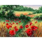 Алмазная мозаика АЖ-1682 «Маки на лугу»