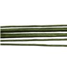 Проволока флорист. 60 см Астра  1,20 мм (уп. 50 шт.) зеленый