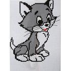 Набор для вышивания «Гелиос № 07 Том»