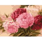 Набор для раскрашивания Molly KH0033/1 «Оттенки розового»