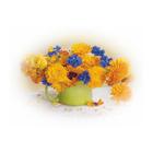 Набор для раскрашивания Molly KH0242  «Календула с васильками» 15*20 см