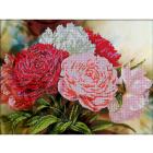 Рисунок для вышивания бисером Астрея (Gluria) 70353 «Разноцветные пионы» 39,5*29,5 см