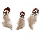 Перья 5AS-055  декор. 7-10 см (уп 10 шт) 7724151 коричневый/серый