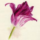 Набор для вышивания Алиса 2-44 «Тюльпаны. Сиреневый бархат» 22*26 см