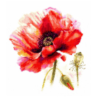 Набор для вышивания Алиса 2-46 «Мак. Ярко-красный» 22*24 см