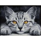 Алмазная мозаика АЖ-1807 «Желтоглазый котенок» 30*40 см