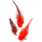 Перья GLOREX 63821003 красный  уп. 15 шт
