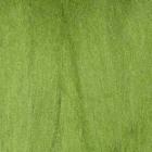 Шерсть для валяния вискоза  (уп. 50 г) Троицк 0580 зеленое яблоко