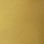 Кожа натур. 15*20 см для шитья и рукоделия А5 горчичный 501094