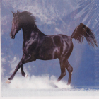 Алмазная мозаика DIY (с рамкой) LM-K20210 «Черный конь» 20*20 см