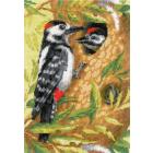Набор для вышивания Риолис №1851 «Дятел» 21*30 см