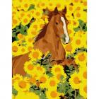 Картина по номерам Molly KH0791 «Лошадь в подсолнухах» 15*20 см