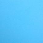 Фетр (однотон.) Hard 1 мм / 20*30 см (уп. 10 шт., цена за 1 шт.) 615 голубой