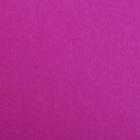 Фетр (однотон.) Hard 1 мм / 20*30 см (уп. 10 шт., цена за 1 шт.) 619 сирень