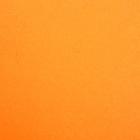 Фетр (однотон.) Hard 1 мм / 20*30 см (уп. 10 шт., цена за 1 шт.) 645 оранж.