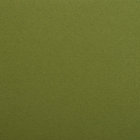 Фетр (однотон.) Hard 1 мм / 20*30 см (уп. 10 шт., цена за 1 шт.) 663 болотный