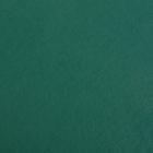 Фетр (однотон.) Hard 1 мм / 20*30 см (уп. 10 шт., цена за 1 шт.) 667 т.зеленый