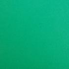 Фетр (однотон.) Hard 1 мм / 20*30 см (уп. 10 шт., цена за 1 шт.) 705 зеленый