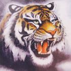 Алмазная мозаика DIY (с рамкой) LM-K20065 «Тигр» 20*20 см