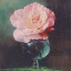 Алмазная мозаика DIY (с рамкой) LM-K20124 «Роза стеклянной вазе» 20*20 см