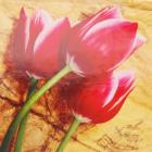 Алмазная мозаика DIY (с рамкой) LM-K20191 «Красные тюльпаны» 20*20 см
