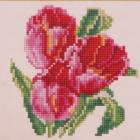 Алмазная мозаика Diamond MM1052«Три тюльпана» 25*25 см