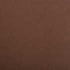 Фетр (однотон.) Астра 1 мм / 20*30 см (уп. 10 шт., цена за 1 шт.) 690 коричневый