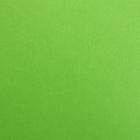 Фетр (однотон.) Hard 1 мм / 20*30 см (уп. 10 шт., цена за 1 шт.) 674 салатовый