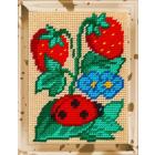 Набор для вышивания с пряжей BAMBINI  X2241 «Земляника» 15*20 см