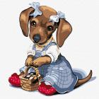 Картина по номерам Molly KH0916  «Такса с корзиной» 20*20 см