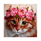 Картина по номерам Molly КН0690  «Пушистая красотка» 30*30 см