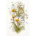 Набор для вышивания Чудесная Игла  №100-103 «Ромашки» 14*23 см