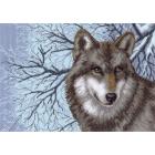 Рисунок на канве МП (37*49 см) 1538 «Волк»