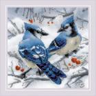 Набор для вышивания Риолис №1925 «Голубые сойки» 20*20 см