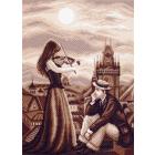 Рисунок на канве МП (37*49 см) 1460 «Мелодия в ночи»